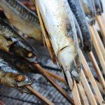Ist Fisch essen gesund?