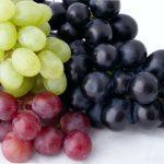 Weinherstellung und Lagerung von Wein